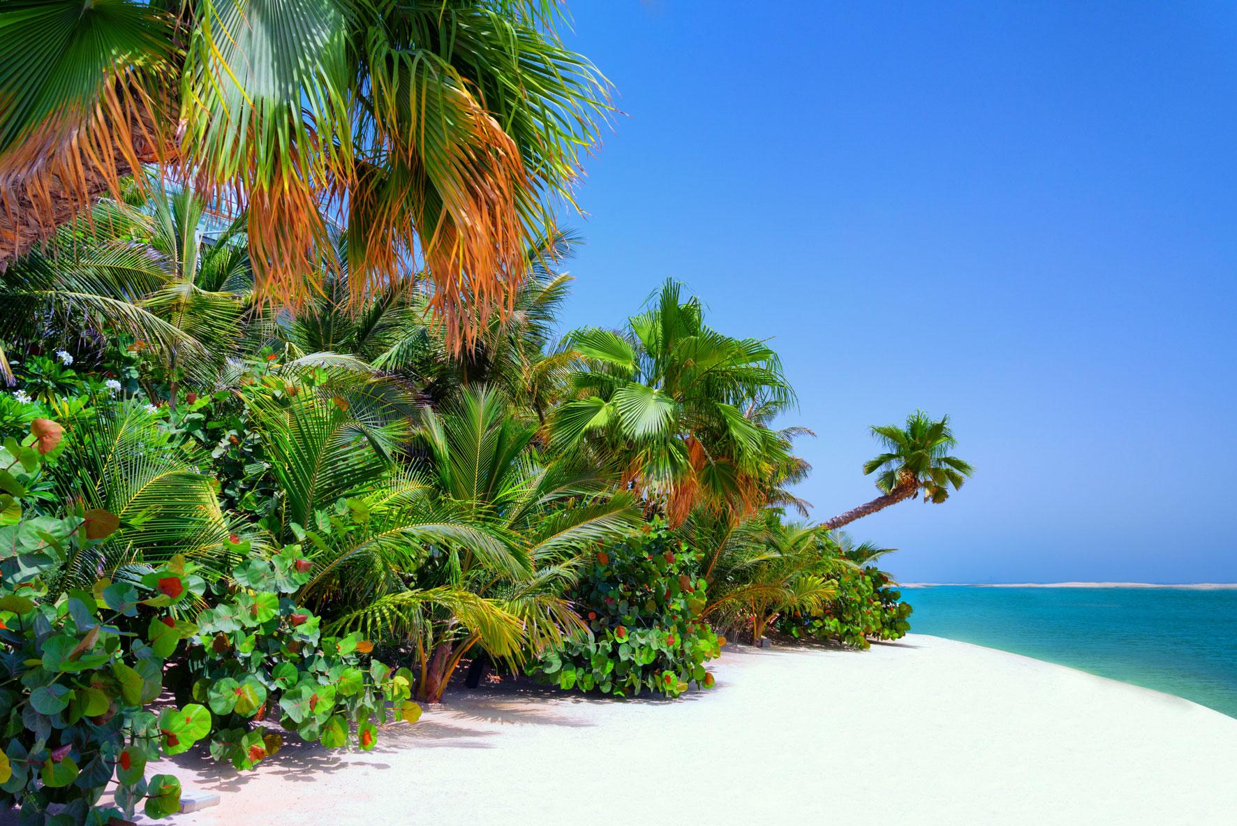 جزيرة السويد جزر العالم دبي (15)