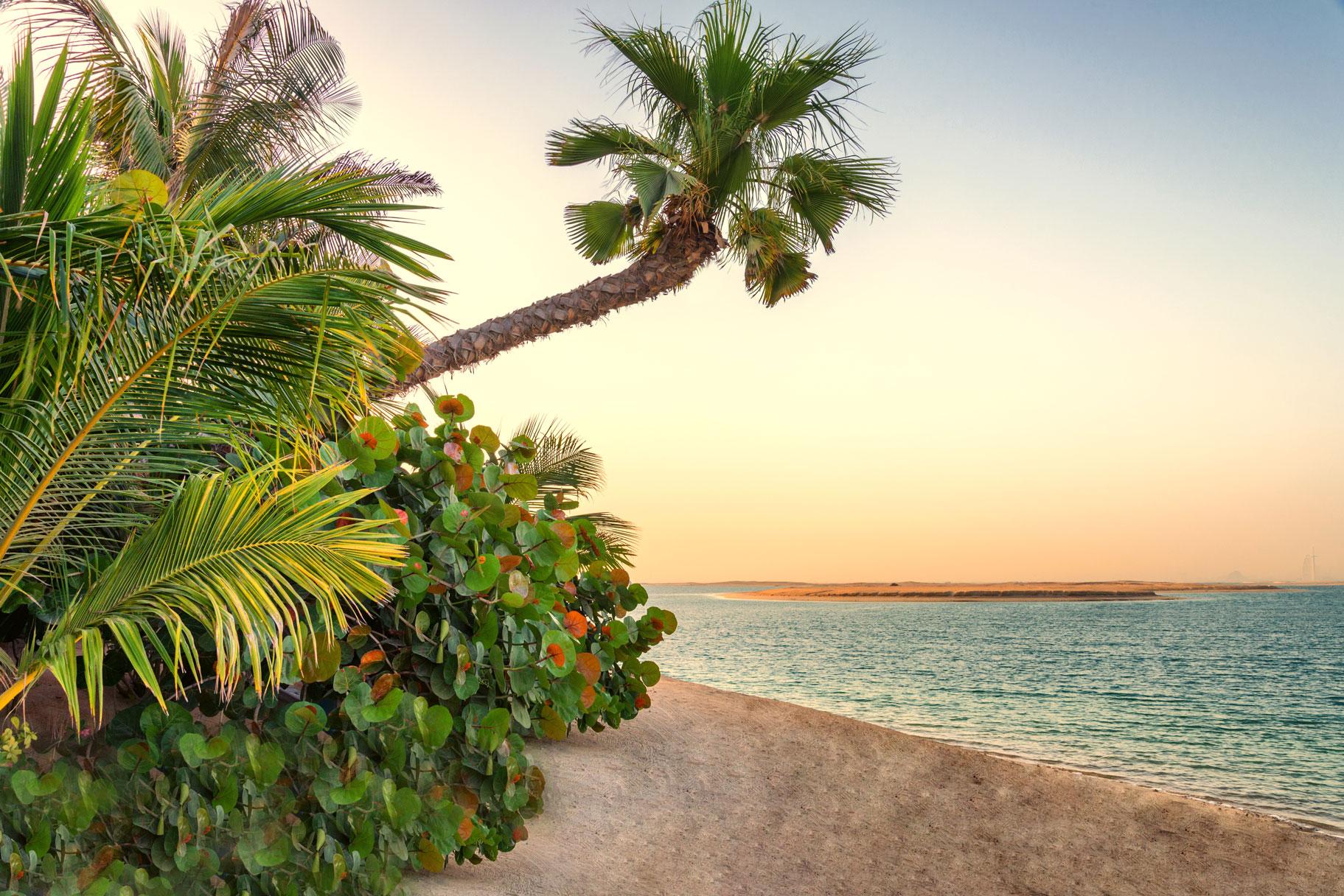 جزيرة السويد جزر العالم دبي (2)